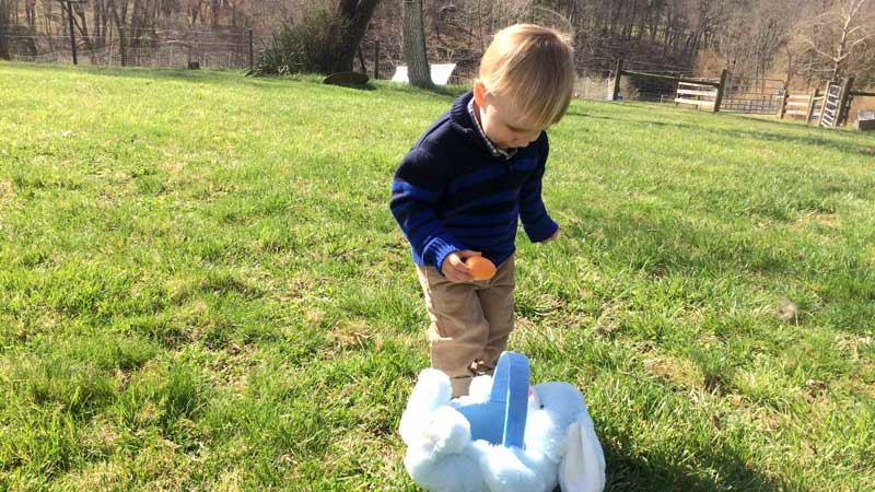 Quincy's Easter Egg Hunt