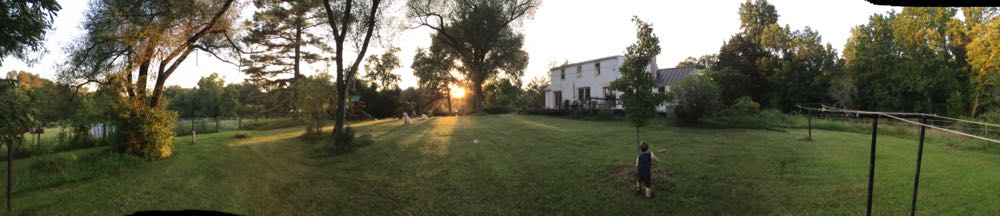 panorama of back yard