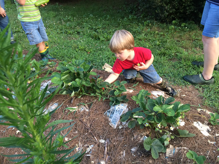 Homesteading with Kids: Amy Landers